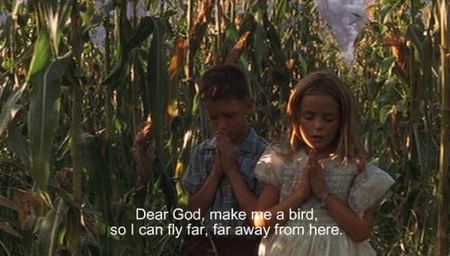 MAKE ME A BIRD